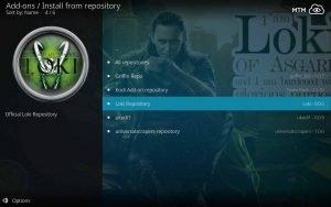 Select Loki Repository